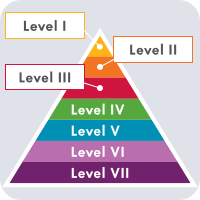 7-level, colorful pyramid demonstrating the different levels of evidence.